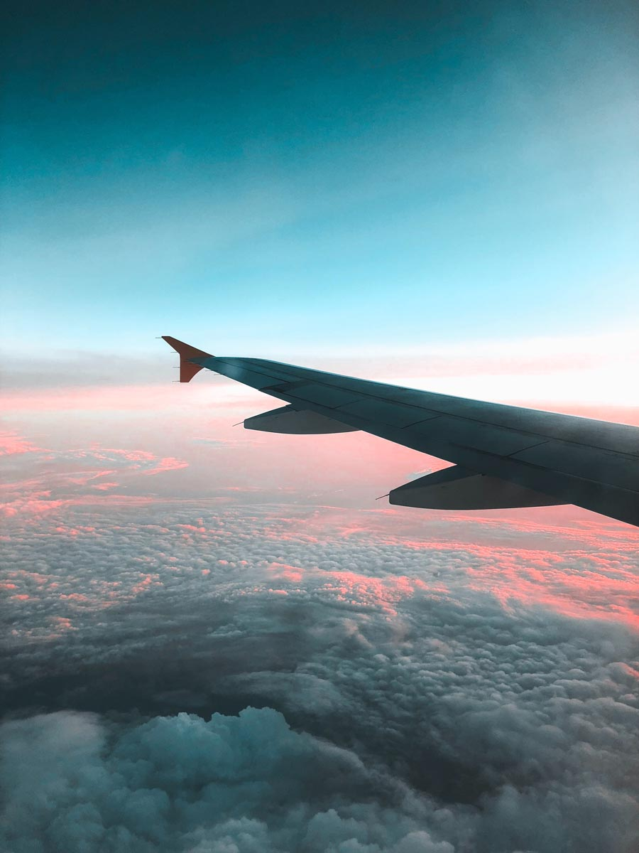 Deducting Travel and Immigration Expenses
